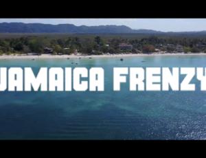 Jamaica Frenzy 2020: Lineup Announce